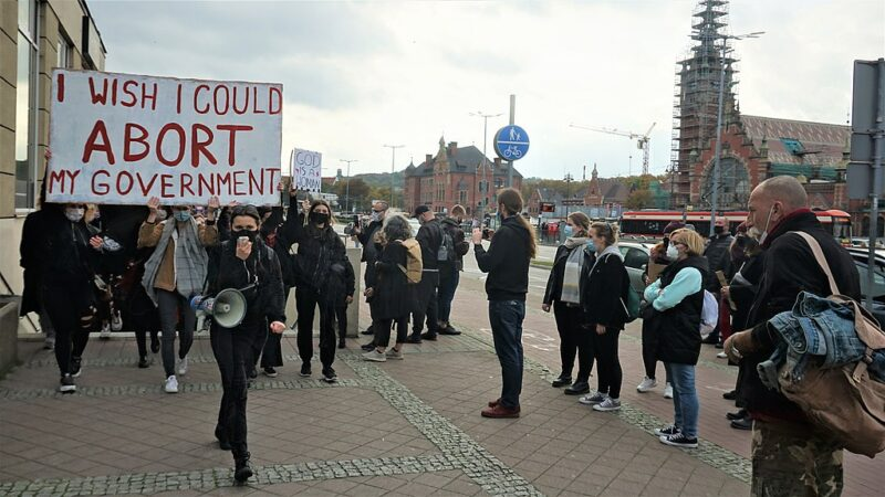 """A crowd of protestors in Gdańsk. One holds a sign reading, """"I wish I could abort my government."""""""