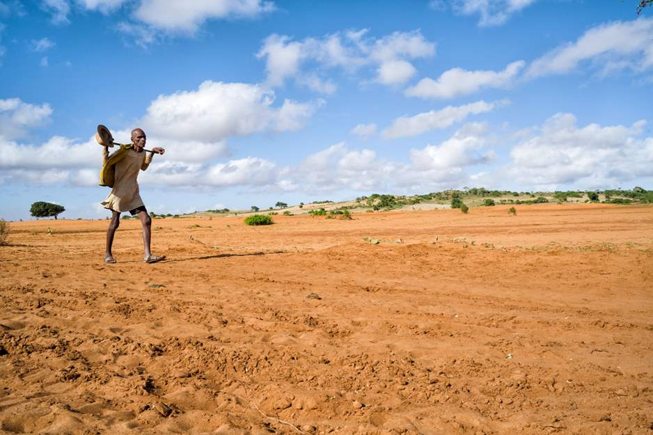 Madagascar Suffering Through Worst Climate-Induced Famine – The  Organization for World Peace